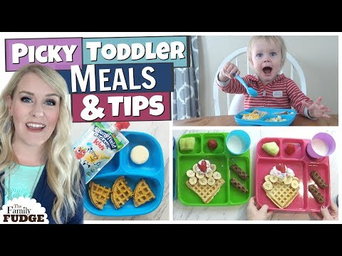 TODDLER MEALS + Easy HACKS to help PICKY Eaters 😃