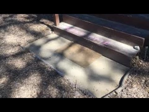 Wood Chip Walkway (how I'm using wood chips)(wood chips landscaping)