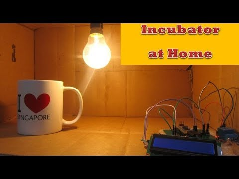 How to make an Incubator at home | DIY Arduino | Temperature controlling Incubator