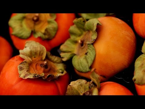 Cooking with persimmons