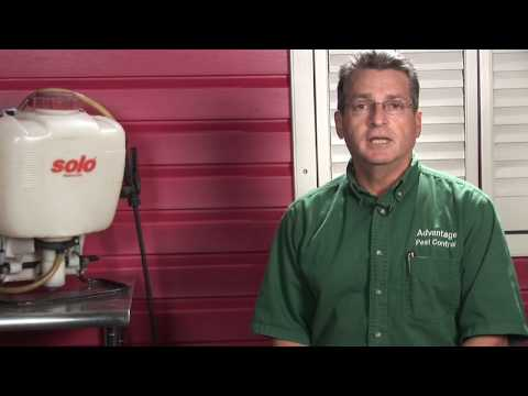 Pest Control : How to Kill Indoor Gnats
