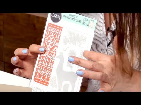 Thinlits Die and Embossing Folder Sets - Sizzix