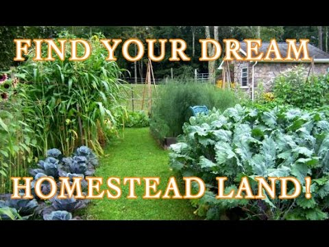 Find Your Dream Homestead Land! Buy or Build?