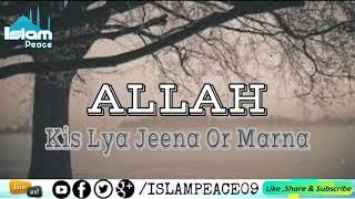 Whatsapp Status || Beautiful lines || Molana Tariq Jameel sb
