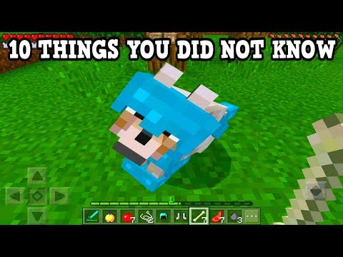Minecraft Xbox 360 + PS3: 10 Amazing Things You Possibly Didn't Know You Could Do In Minecraft
