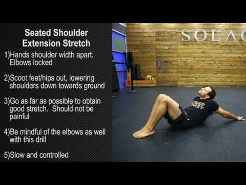 Seated Shoulder Extension Stretch