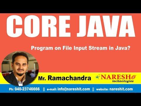 Core Java Tutorial | Program on File Input Stream in Java? | By Mr.Ramchander