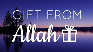 A Gift From Allah - Hamza Yusuf | #Educational