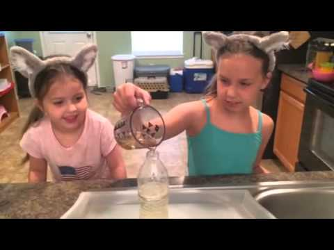 How to make a volcano with vinegar and baking soda.
