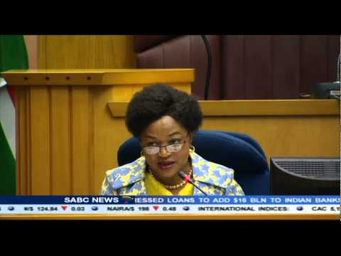 Speaker Mbete confirms recruitment of former SAPS officers into PPS