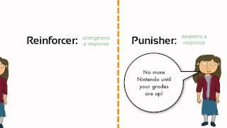 Learning: Negative Reinforcement vs. Punishment