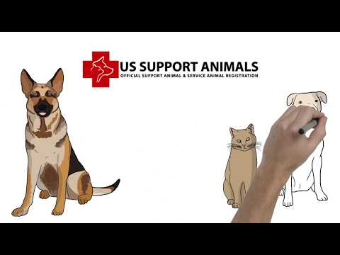 Register Your Emotional Support Animal or Service Animal Easily
