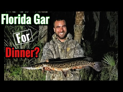 How to clean and cook a Florida Gar fish