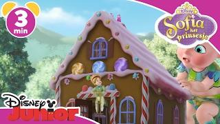 Sofia het Prinsesje | Reuze baby | Disney Junior NL