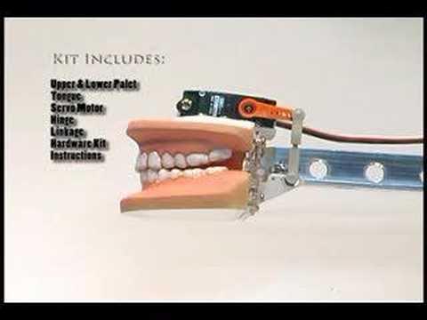 Animatronic Mouth Kit Demo