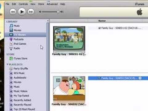 How to orginize itunes library
