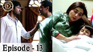 Khuda Mera Bhi Hai Ep 13 - 14th January 2017 - ARY Digital - Top Pakistani Dramas