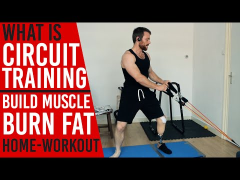 Circuit Training: Build Muscle Burn Fat (Home-Workout)