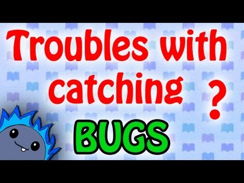 BUG GUIDE -  Animal Crossing: New Leaf