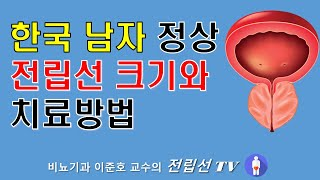 한국인 남성 정상 전립선 크기와 치료방법
