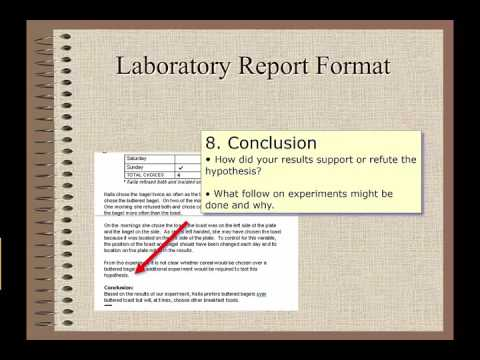 Lab Report and Experimental Design