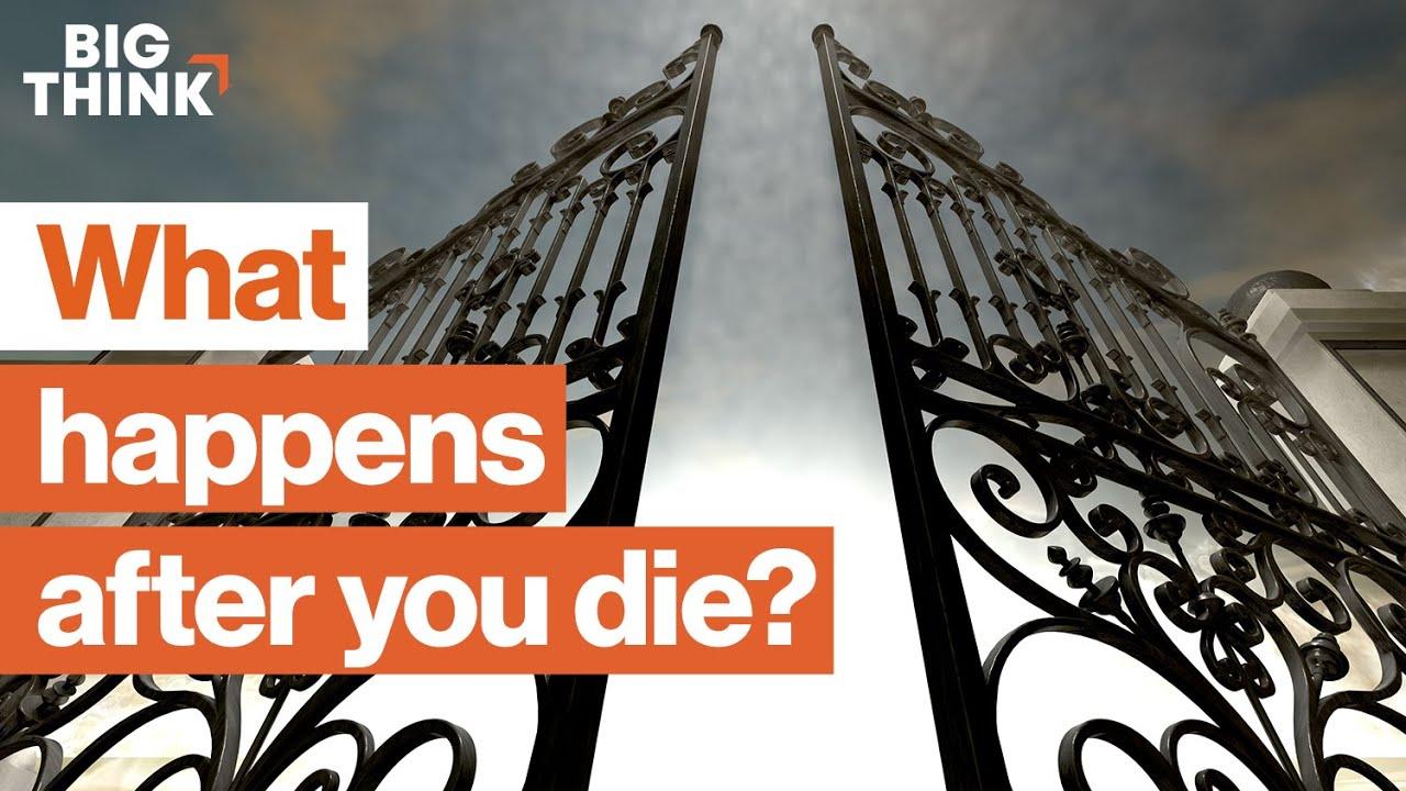Is there life after death?   Sam Harris, Bill Nye, Michio Kaku, & more   Big Think