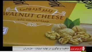 Iran Diary villages products manufacturer, Amol county توليدكننده محصولات روستايي لبني آمل ايران