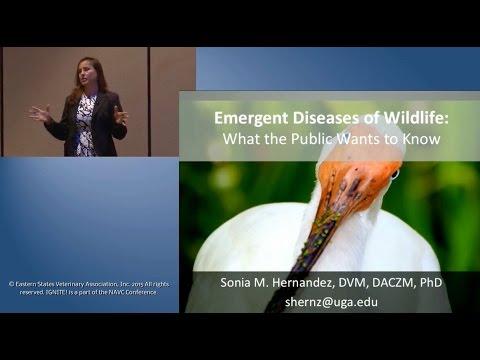 NAVC IGNITE! 2015 Emergent Diseases In Wildlife