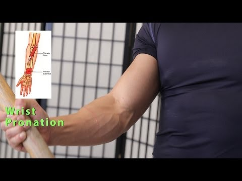 Build Forearm Muscles/Strength exercises at home & gym