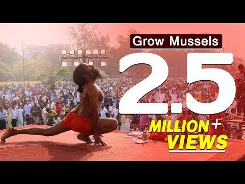 Grow Mussels Within 7 Days by Ayurvedic Medicines- Swami Ramdev
