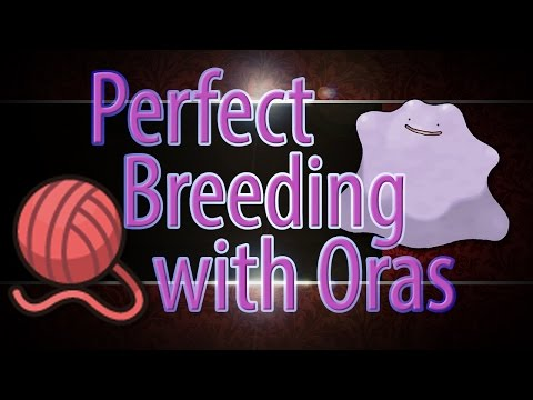 Pokemon Oras Prefect IV Breeding Guide