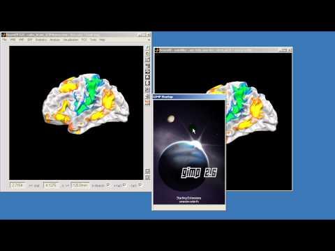 NeuroElf - Surface vs. Rendering visualization