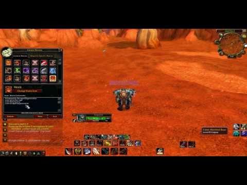 WoW 85 Warrior Healing Macro  4.1.0