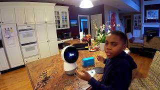 Our New Jibo