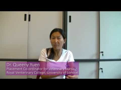 Dr. Queeny Yuen (Placement Co-ordinator for Veterinary Nursing, University of London)