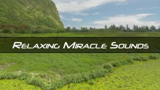 1 Hour Relaxing Soothing Voice For Work and Concentration