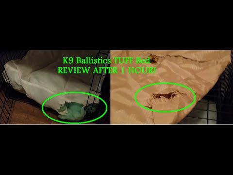 K9 Ballistics Chew Proof TUFF Bed REVIEW AFTER 1 HOUR