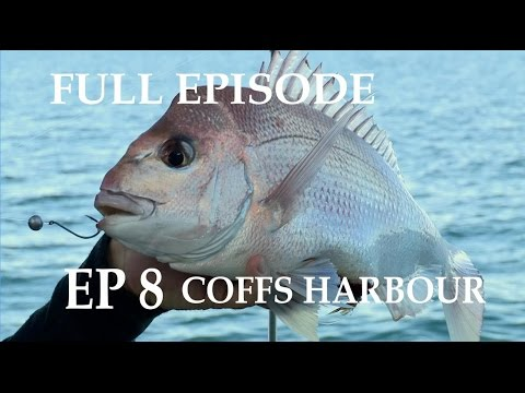 Catch & Cook Snapper Fishing Ep 8 Coffs Harbour | The Hook and The Cook