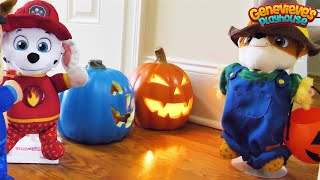 Download Paw Patrol Baby Pup Halloween Toy Learning for Kids! Video