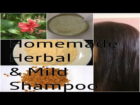 Homemade Shampoo for Oily Hair Best Mild Shampoo for Damaged Hair Hibiscus Shampoo to Grow Hair Fast