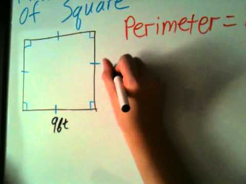 How to Find the Perimeter of Square