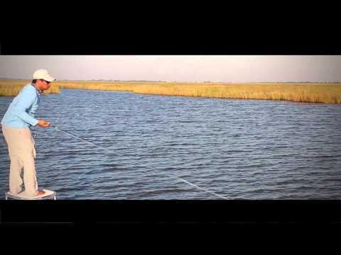 Galveston Fly Fishing: Red Tide