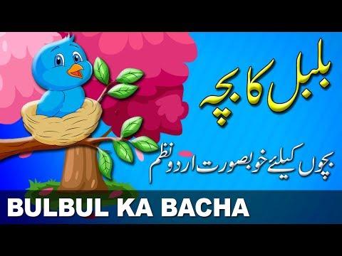 Xxx Mp4 Bulbul Ka Bacha بلبل کا بچہ Urdu Nursery Rhyme Urdu Poem اردو نظم 3gp Sex