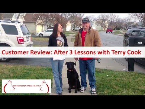 Best Dog Training in Columbus Ohio: Customer Review: After 3 Lessons with Terry Cook