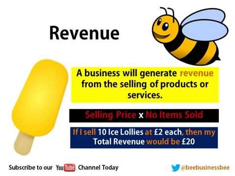 Bee Business Bee Business Revenue and Profit Presentation