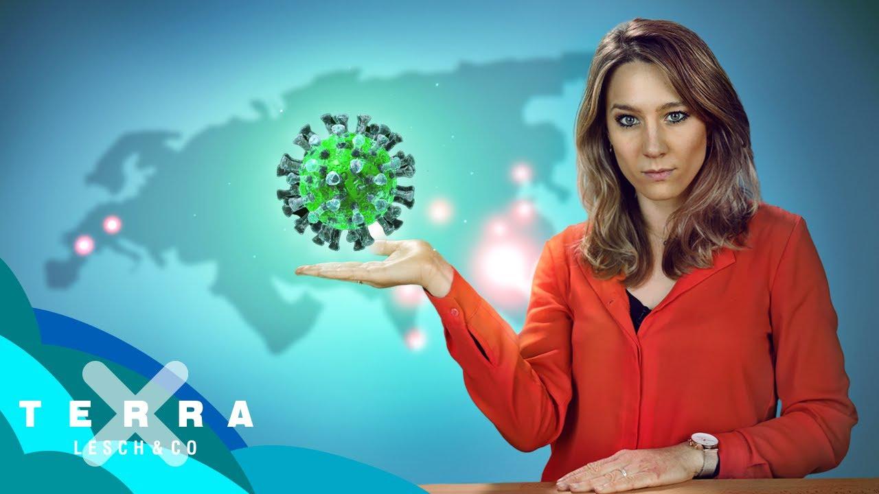 Wie gefährlich ist das neue Coronavirus aus China? Wissenschaftlich geprüft | Jasmina Neudecker