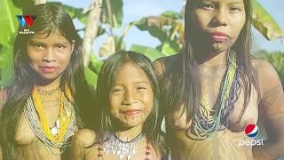Download MAAJABU YA MSITU WA AMAZON / UNATISHA / MITI INATEMBEA / NYOKA WA AJABU Video