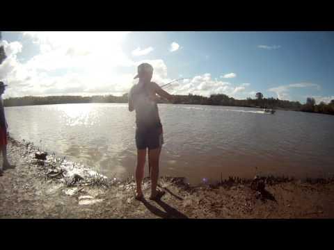 logan river bullshark fishing qld landbased