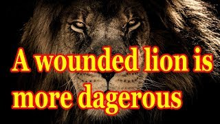 Lion Quotes for strong life 0002