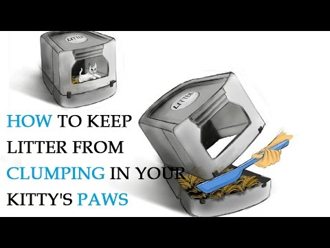 How to Keep Litter from Clumping in Your Kitty's Paws